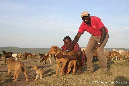 Hund wird gegen Tollwut geimpft